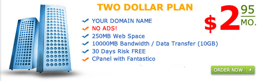 """Two Dollar Plan"" 250MB web space 10GB Bandwidth only for $2.95 a month"